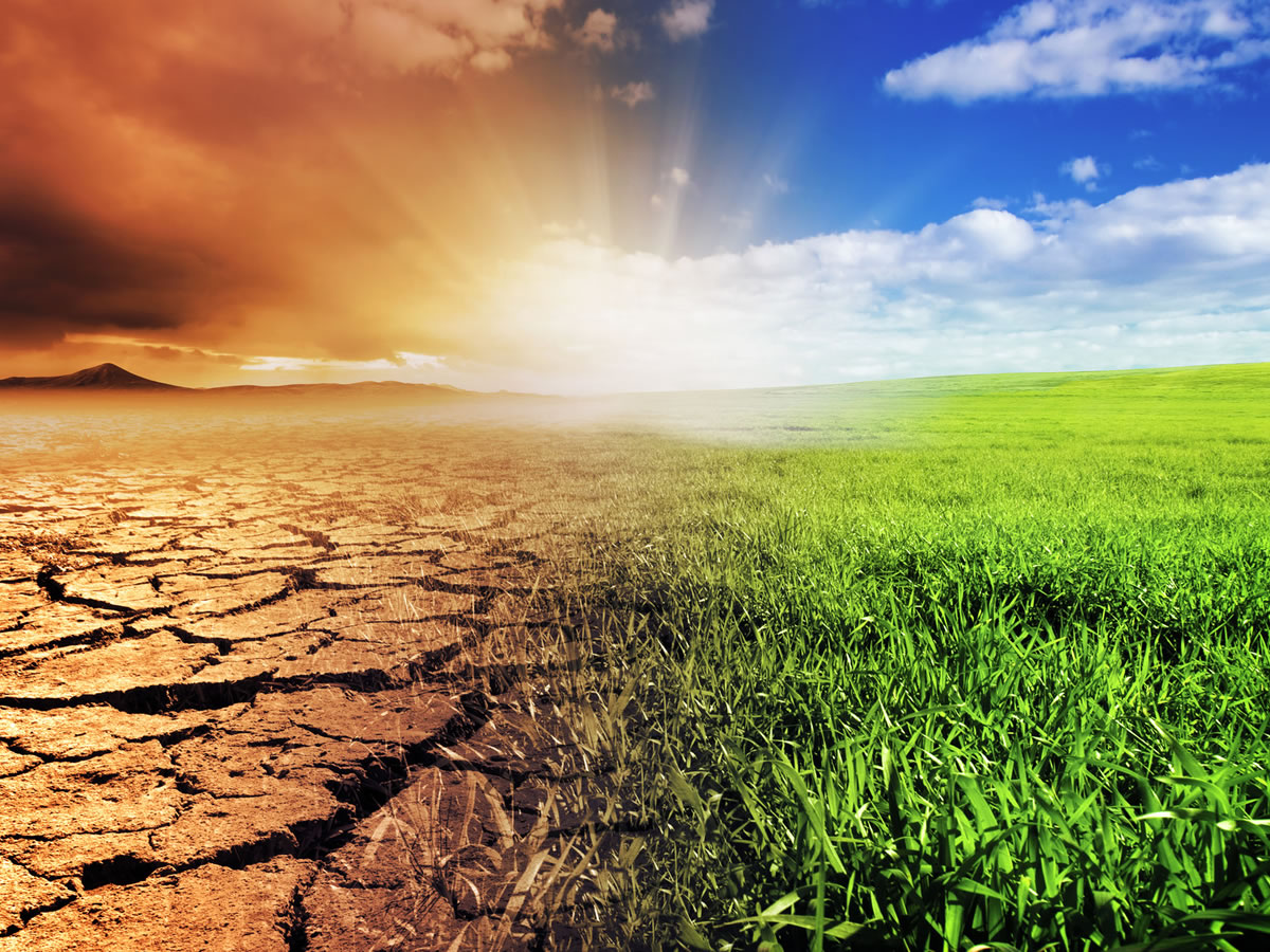 New Seminar Series Addresses Climate Change and Healthcare